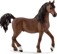 Schleich Horse Club - 13811 Araber Hengst, ab 3 Jahre